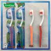 Un Toothbrush dei quattro di colori di alta qualità adulti del commercio all'ingrosso