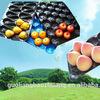 Bandeja de fruta de Plástico PP para el supermercado y mostrar