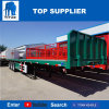 Titan 3 essieux Shipping Container dosseret de remorque Remorque