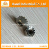 Fournisseur d'or en acier inoxydable A4-80 1/4~k'écrou de blocage de 5/8
