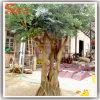 Decorationのための高いImitation Artificial Olive Wood Tree Dry Tree