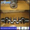 Le vilebrequin de moteur Isuzu 4hf1/ 4JB1/ 6bd1/ 10pd1/ 4JA1 (tous modèles)