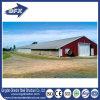 Prefab Poultry Farm / Farm De Frango Chicken Poultrys Breeding House