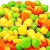 Legumes mistos congelados IQF de alta qualidade