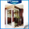 독일 Technology를 가진 Lgeer Home Lift