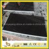 Telha de assoalho Polished do granito preto de Shanxi & telha da pavimentação