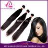 最上質の加工されていないインドのバージンのRemyの人間の毛髪の拡張まっすぐで自然な毛