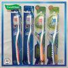 Le setole speciali progettano il Toothbrush antisdrucciolevole della maniglia