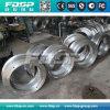 La boucle professionnelle d'acier inoxydable de moulin de boulette de constructeur de haute précision meurent