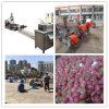 機械装置をリサイクルする高性能PP/PEの不用なプラスチック