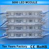 indicatore luminoso 5050 del modulo di 12V LED per il segno d'annuncio