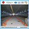 Camera d'acciaio prefabbricata dell'azienda agricola di pollo di Sructure