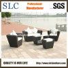 Meubles extérieurs de sofa de rotin de jardin (SC-B1004)