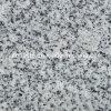 Granito branco claro de Padang, telha cinzenta do granito G633 de China
