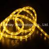 Una flessione al neon dei 2 collegare LED per illuminazione della decorazione dell'indicatore luminoso della baia