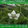 Extrait doux naturel de feuille de thé de 100% (40% 70% 80% Rubusoside)