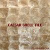 自然な真珠色の貝のモザイク・タイル