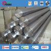 Holle Staaf van het Roestvrij staal van ASTM A511 Tp316L de Naadloze