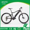 Bici eléctrica popular de 250W 36V para el mercado europeo con el mecanismo impulsor medio