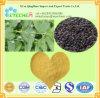 Выдержка плодоовощ Malaytea Scurfpea ингридиентов продуктов здравоохранения естественные/Psoralea Corylifolia/5% Psoralen