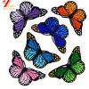 도매 나비 100%년 Embroidear Chenile, 뒤 (YB PH EP 428)에 자수 패치 또는 패치 철