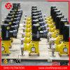 Precio de fabricante de dosificación inoxidable de la bomba del pistón de acero de China