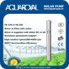 Bombas solares de la C.C. |Imán permanente|Motor sin cepillo de la C.C. |El motor se llena de agua|Receptor de papel solar Pumps-4sp8/3 (ÉL)