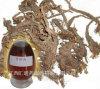 Aceite de Spikenard de la fábrica al por mayor / aceite de Jatamansi
