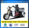 Fl110zk-Bの完全な運3の車輪のPassagersのオートバイ