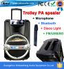 Bluetooth, FM, USB/SD, Mikrofon PA-Lautsprecher