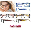 Рамка оптового зрелища стекел Eyewear новой модели способа оптически