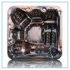 Le CE de fournisseur d'exportateur de Wholescale, SAA a approuvé le baquet chaud (S520)