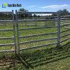 Bestiame poco costoso galvanizzato che recinta i comitati al servizio dell'Australia