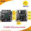 CCD 800 TVL Módulo de câmara CCTV