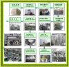 Linea di produzione di amido-glutine del frumento caldo di vendita