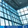 Vetro tinto di vetro/vuoto del vetro float/decorazione/vetro riflettente colorato
