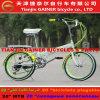 Projeto elegante de dobramento da bicicleta do Gainer 20 de Tianjin