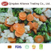 Légumes mélangés gelés avec le raccord en caoutchouc de broccoli de chou-fleur