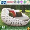 Напольное патио Sunbed сада мебели (TGLU-02)