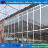 中国のトンネルのアルミニウム日光のガラス温室