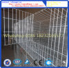 A gaiola do coelho/camada das gaiolas/gaiola animal/podem ser personalizadas