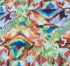Stof van de Druk van de Polyester van 100% de Digitale voor het Gordijn van het Kussen van de Bank van de Decoratie/van het Gordijn