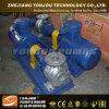 De Dieselmotor Water Pump van Yonjou 5HP