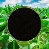 供給の付加的に85%Min粉ナトリウムHumate