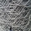 Kippegaas van het Roestvrij staal van Sailin het Zware