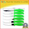 Инструмент ножа стейка ножа плодоовощ нержавеющей стали установленный (RYST088C)