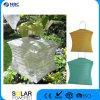 Indicatore luminoso solare solare facoltativo multicolore del giardino della lanterna leggiadramente