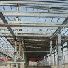Almacén de la estructura de acero/edificio (SSW-023)