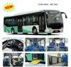 Autobus de ville de Zonda, autobus lumineux, autobus de passager