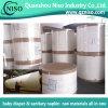 Hygienische Grad-Flaum-Masse für Windeln mit hohem Absorbption (TP-011)